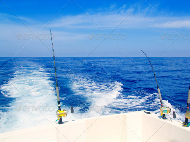 Amelia island fishing charters amelia island guides for Amelia island fishing charters