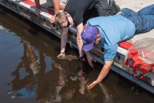 Redfish Spot Tournament Dock