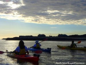 Amelia Island Kayak Excursions Fort Clinch View