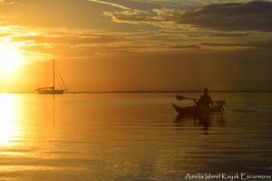Amelia Island Kayak Excursions at Sunset