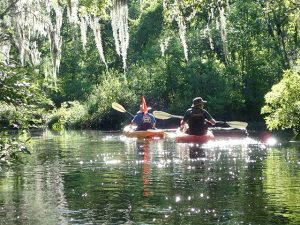 Sun sparkling on water as two people kayak river at Amelia Island